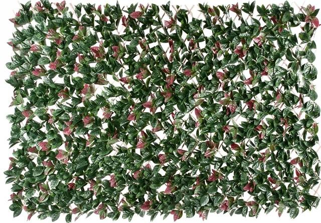 Photinia hedge extendable trellis screen 2m x 1m for Esstisch 2m x 1m