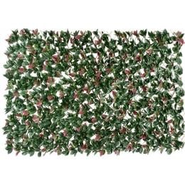 Photinia Hedge Extendable Trellis Screen 2m x 1m