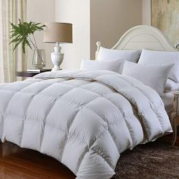 Royal Comfort 350GSM Luxury Soft Bamboo All-Seasons Quilt  - Queen