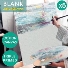 Oil Canvas  Frame 40x50