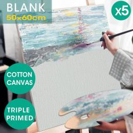 Oil Canvas  Frame 50x60cm