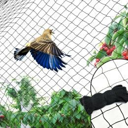 Commercial Fruit Tree Plant Knitted Anti Bird Netting
