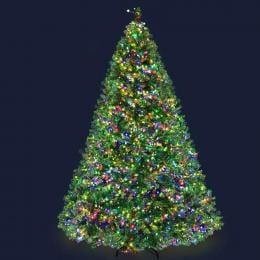 Jingle Jollys Christmas Tree LED 2.4M 8FT Xmas Green Home Decor