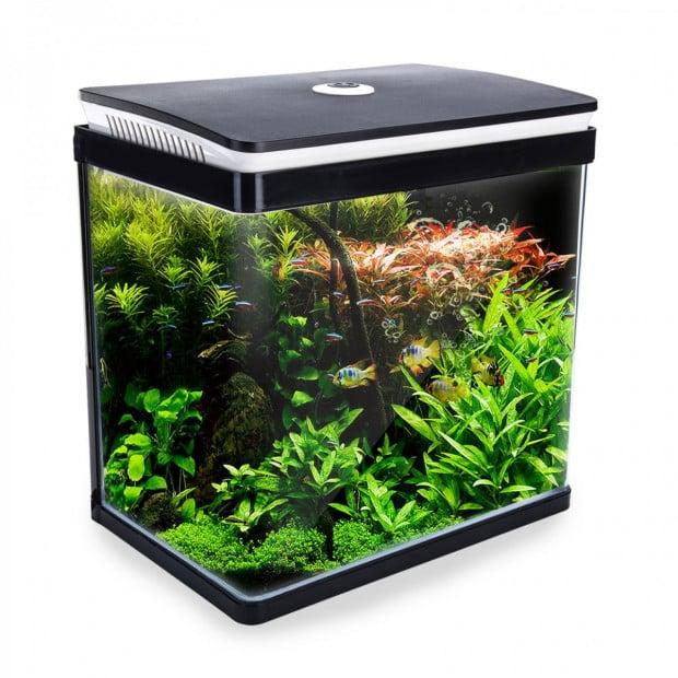 Aquarium Curved Glass RGB LED Fish Tank 30L