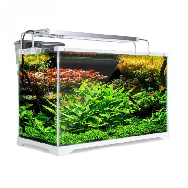 Aquarium Starfire Glass Aquarium Fish Tank 39L