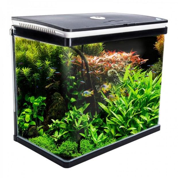 Aquarium Curved Glass RGB LED Fish Tank 52L