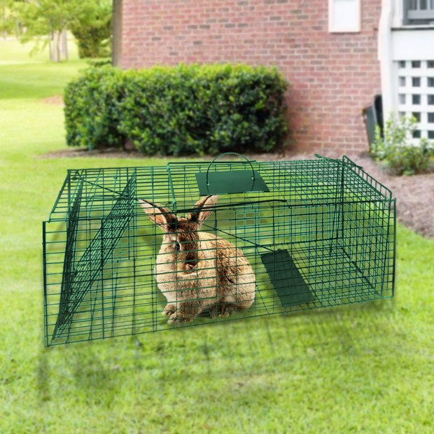 Small Animal Trap Humane Cage Pet  Image 2