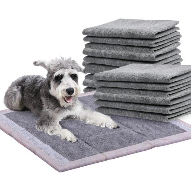 200pcs Absorb Plus Charcoal Pet Toilet Training Pads 60x60cm
