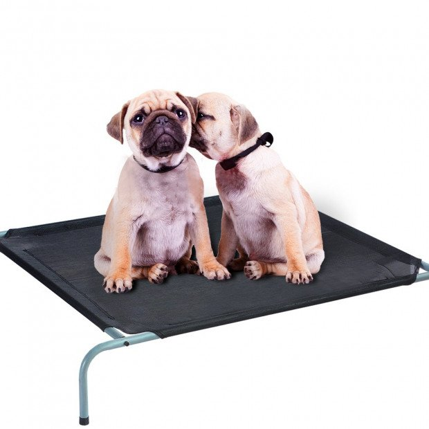 Pawz Pet Bed Trampoline With Heavy Duty Frame M
