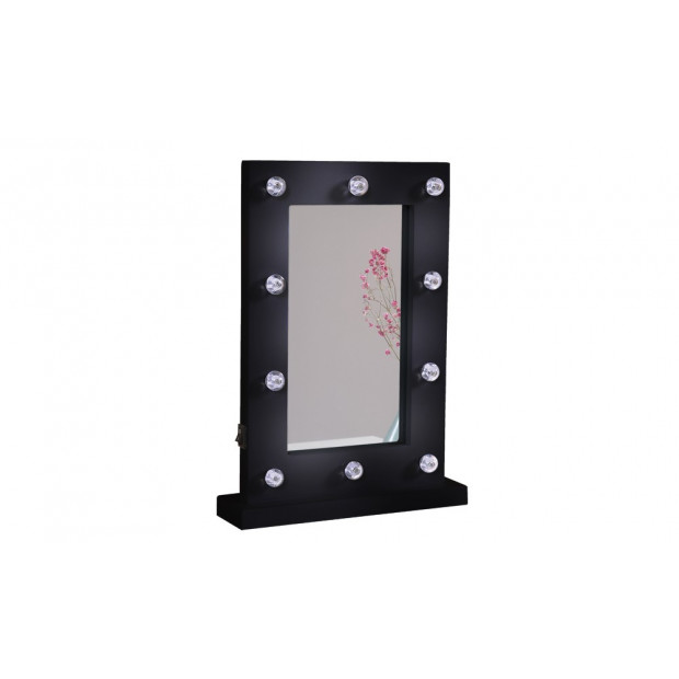 Hollywood Style Makeup  Mirror With 10 Led Lights In Black Colour