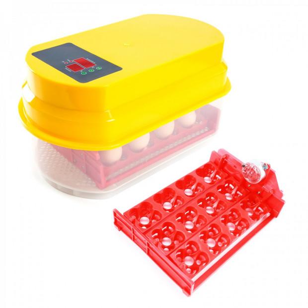 Digital Egg Incubator - 12 Eggs