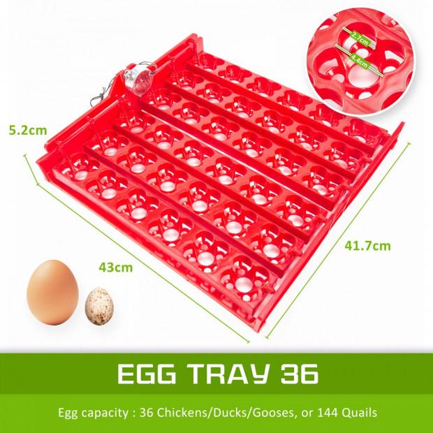 Digital Egg Incubator - 36 Eggs Image 2